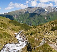 Spring in the Alps by Walter Quirtmair