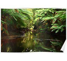 Salmon River , far nor west Tasmania , Australia Poster