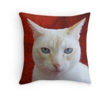 Oscar on Red Throw Pillow