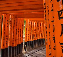 Fushimi Inari Temple by davidh1978