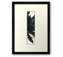 Slice of Spike Framed Print