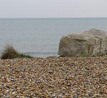 Still Life on the Beach by Ian Ker