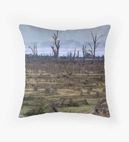 Haunting Lake Mulwala Throw Pillow
