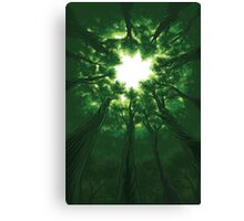 Tree Cathedral Canvas Print