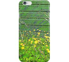 Buttercups................................All Products iPhone Case/Skin