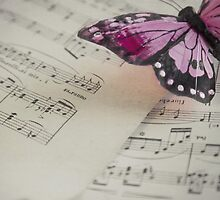 Dance of butterfly by DonatellaLoi