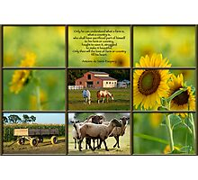 Love of Farm, Love of Country Photographic Print