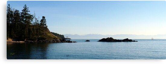Sailing into Paradise by Rick Lawler