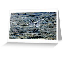 A gentle touch down Greeting Card