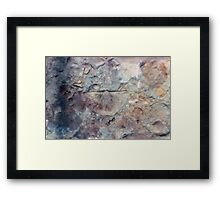 Brachiopod fossil from Usk, Monmouthshire Framed Print