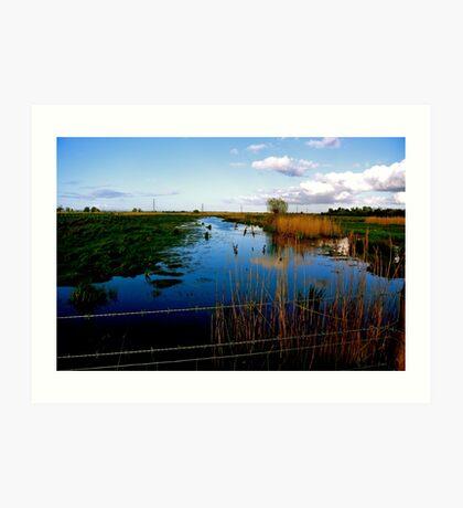 Marshes ....Stockland Bristol Art Print