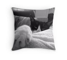 My big Paw Throw Pillow