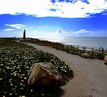 Cabo da Roca- Featured 6/20/09 Portugal Group by Wayne Cook