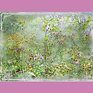 """""""A Window of Dreams"""" Scarf ~ Pink Textured Borders by Susan Werby"""