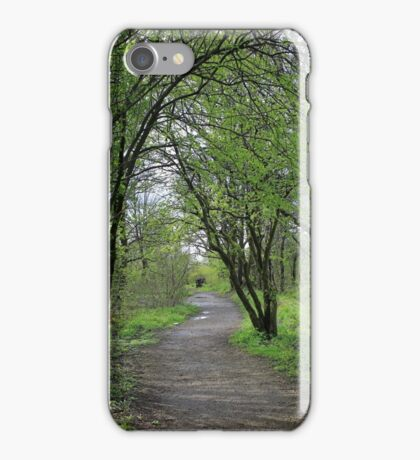 Landscape of path in wood iPhone Case/Skin