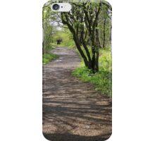 Landscape of path in wood iPhone Case/Skin