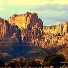 Temple Canyon by Susan Bergstrom