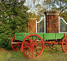 Painted Wagon by Linda Yates