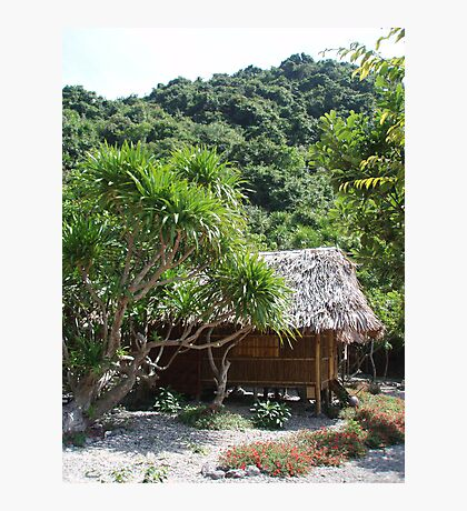 Monkey Island Hut Photographic Print