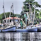 Georgetown Boats by suzannem73