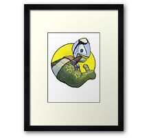 The Silver Turtle Framed Print