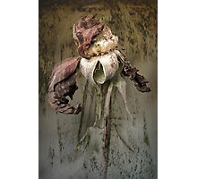 Rust 'n Roses ~ #2 Photographic Print