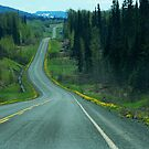 The Cassiar Highway by Dyle Warren