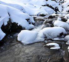 Cold Waters, Falls Creek, Australia by Michael Boniwell