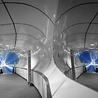Tunnel Vision by Ward McNeill