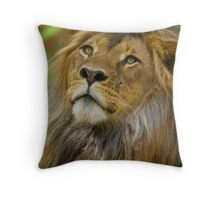 Big Cat Gaze Throw Pillow