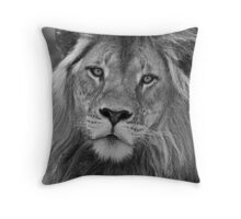 Big Cat Stare Throw Pillow