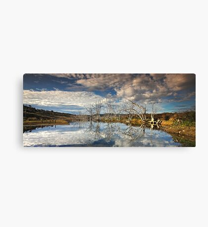 The Nature of Reality Canvas Print