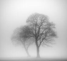 Sherdley Park by Krzysztof Nowakowski