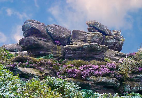 Brimham Rocks by Trevor Kersley