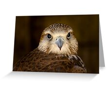 Lanner portrait ....... Greeting Card