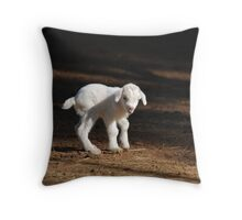 Looking For Mary Throw Pillow