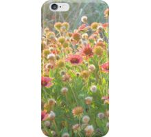I'll Give You A Daisy A Day iPhone Case/Skin