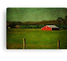 The Red Farmhouse Canvas Print