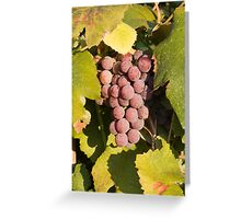 A Vineyard Delight Greeting Card