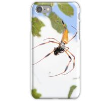 Golden Silk Orb Weaver iPhone Case/Skin
