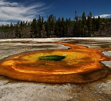 Chromatic Pool - Upper Geyser Basin - Yellowstone National Park by Stephen Beattie