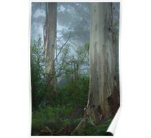 Misty Morning Blue Poster