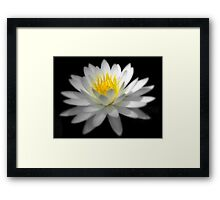 His Floral Majesty Framed Print