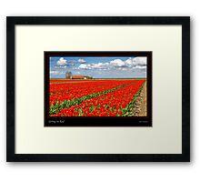Spring in Red Framed Print