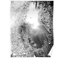 puddle Mirror Poster