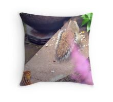 Hey, Who Invited YOU? Throw Pillow