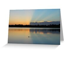 duck rays Greeting Card
