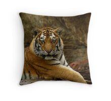 Tiger Looking Throw Pillow