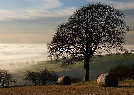Fog over the vale of York by Jon Tait