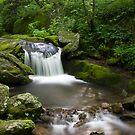 Corner rock creek by Forrest Tainio